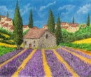 Lavender Field of France