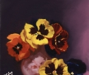 Pansies on the Dark Side  Limited Print